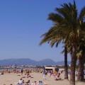 Playa-de Levante,-Salou. Unas palmeras, la playa, y al fondo las montañas y el cielo azul.